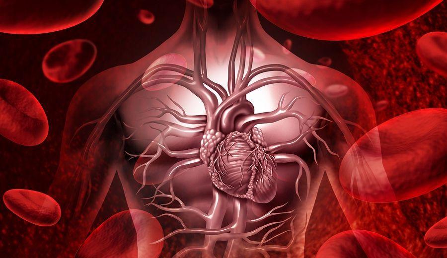 Valvular Heart Surgery